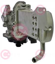 CMG73007 BACK VAG Type