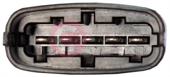 CVG77023 PLUG GM Type 12V